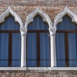 Ancient arched windows typical of Venice — Stock Photo #53882899