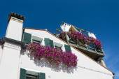 Flowered balconies in Venice, Italy — Stock fotografie
