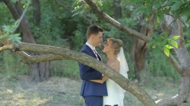 Bride and groom cuddling, kissing and smiling on their wedding day, in the park. — Stock Video