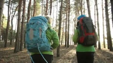 Hiking people - two hiker women walking in forest at sunny day.  Hikers trekking as part of healthy lifestyle. steadicam shot — Stock Video