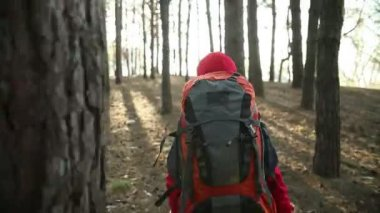Child Walking in Adventure on Mountain Trails, Paths , hiking with backpack, Hikers Hiking in Forest, Enjoying Nature at Camping — Stock Video