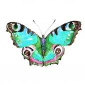 Desenho de borboletas — Foto Stock