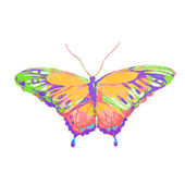 Projekt motyle — Wektor stockowy