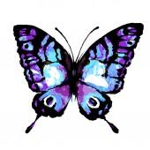 бабочки дизайн — Cтоковый вектор