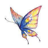 Butterfly423 — Vettoriale Stock