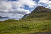 Faroe Islands North Atlantic3 — Stock Photo
