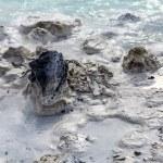 Lava Rock in Blue Lagoon 5 — Stock Photo #75069121