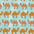 Funny camel Seamless pattern with cute animal on a blue backgrou — Stock Vector #52604961