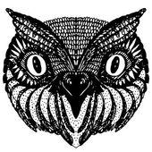 Owl head. — Stock Vector