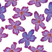 Desert Rose lilac flower. Seamless pattern. Sketch on a white ba — Stock Vector