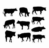 Cow set black silhouette on white background. vector — Vector de stock