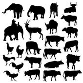 Black silhouettes of elephants, cows, bulls, chickens, deer on white background. vector — Stock Vector