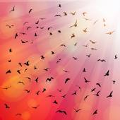 Birds, seagulls silhouette in the rays on pink background, sunset, dawn. Vector — Stock Vector