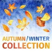 Watercolor leaves. autumn winter collection.  — Vettoriale Stock