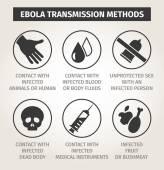 Set icons Ebola virus. Ways of transmission — Stock Vector