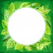 Round frame made of various leaves in watercolor. Hand-painted design elements. — Stock Vector