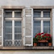 Old Windows with Shutters and Plants — Stock Photo #78163270