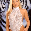 Light Blue Sheer One Piece Lingerie - Dark Blue Tiger Eyes - Stunningly Hot Blond Bombshell - Front View — Stock Photo #52407029