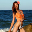 Постер, плакат: Playboy Model Angela Storms Landscape On the Beach