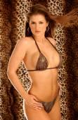Playboy Model Miss St. Augustine - Sheer Mesh Bra and Panty Set - Gold Hoop Earrings - Busty Brunette — Stock Photo