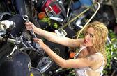 Cut Off Tea Shirt - Daisey Duke Cutoffs - Stunning Greased Blonde - Landscape — Stock Photo