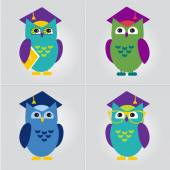Owl in Graduate Hat educational vector icon template flat style. — Stock Vector