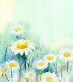 Daisy flowers.Abstract flower painting — Stock Photo