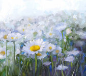 Daisy flowers.Abstract flower oil painting — Stock Photo
