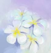 Plumeria-frangipani oil painting.White flowers oil painting — Stock Photo