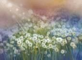 Vintage oil painting flowers plant.Wild flower field at sunrise — Stock Photo