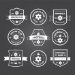 Set of football or soccer emblems, labels and badges — Stock Vector #62978375