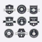 Basketball set vintage emblems, labels and logos or symbols — 图库矢量图片