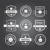 Basketball set vintage emblems, labels and logos or symbols — Stock Vector