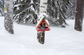 Birdhouse in the winter forest — Stock Photo