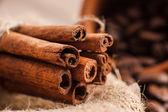 Cinnamon on — Foto de Stock