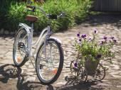 两辆自行车 — 图库照片