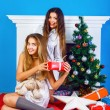 Holiday portrait of two best friends — Stock Photo #62168145