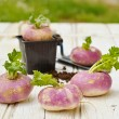 Turnips on wooden table with a mini shovel — Stock Photo #59976711