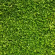 Green leaves wall background — Stock Photo #63022865
