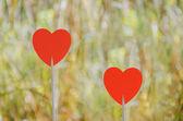 Bokeh arka plan ile iki kırmızı kalp — Stok fotoğraf