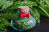 Small bottle of bath salt and christmas tree branches — Stockfoto