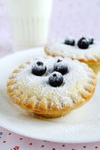 Homemade mini cakes with berries and icing sugar — Stock Photo