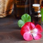 Essential geranium oil — Stock Photo #72471315