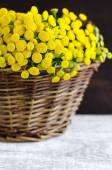 Basket with a bouquet of tansy flowers — Stock Photo