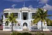 Typical blue colonial house trough palms. — Stok fotoğraf