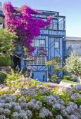 Blue house with flowers in San Francisco — Stock Photo
