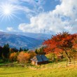 Picturesque autumn rural landscape with a tree with red leaves, clouds sky and old hut in autumn (relaxation - concept) — Stock Photo #57592765