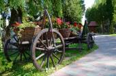 Baskets of flowers on ancient peasant cart — Stock Photo