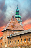 Spire Powder Tower and dome of the cathedral in Lviv, Ukraine — Stock Photo
