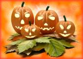 Halloween pumpkin lanterns on orange background — Stockfoto